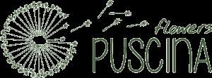 logo_puscina-small